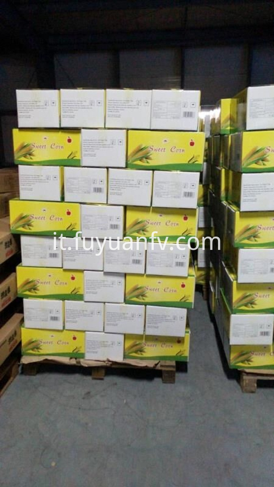 sweet corn in carton