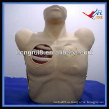 Maniquí de drenaje pleural de ISO, Descompresión de neumotórax, modelo de entrenamiento quirúrgico