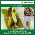 Natürlicher Fucoxanthin-Pulver-Seetang-Extrakt (Fucoxanthin)