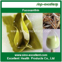 Natural Fucoxantina Powder Kelp Extract (Fucoxanthin)