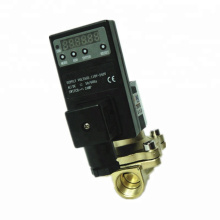 2W160-15T Popular Type Direct Acting 2/2 Way Solenoid Valve With 1S~99h59min59sec Digital Timer