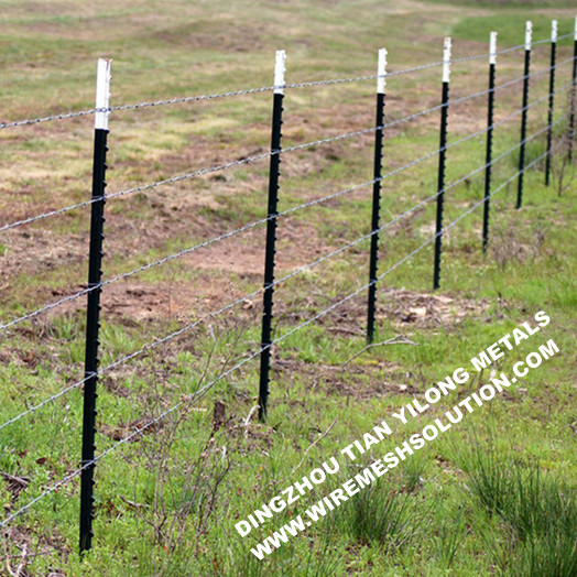 Fence T-Post Green Painted Studded T Post
