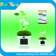 New style mushroom solar flood light with switch