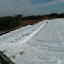 Short-filament geotextile non-woven geotextile is used for the maintenance of the sports hall dam