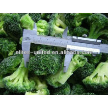 Brócolis orgânicos congelados