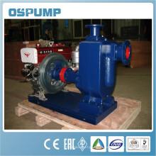 ZW Pompe à eau centrifuge à couplage direct