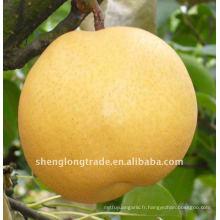 chinois poires fengshui frais vente chaude et de haute qualité