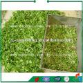 Fortgeschrittener FCJ Modell Windabscheider für Gemüse