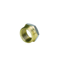 Brass Fittings of Bushing for Pex-Al-Pex Pipe Connector