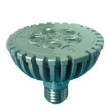LED Spotlight Bulb (GN-HP-WW1W5-PAR30)