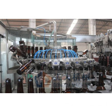 Beer bottling monoblock machine