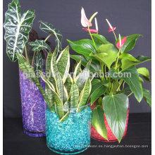 Magic Agua de cristal de suelo de agua de agua de gel de cuentas para la flor de mesa