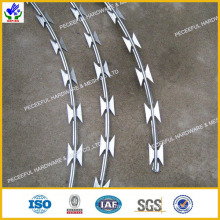 High Quaility Barbed Wire (HPBW-0527)