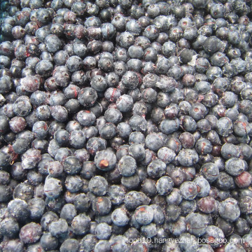 IQF Freezing Organic Blueberry Zl-100065