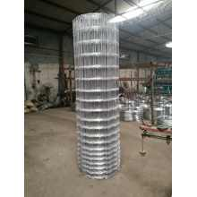 Hot Sale Cattle Fencing Horse Fencing