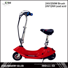 24V Acid Lead Battery 250W Power Power E-Scooter avec Ce
