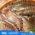 Frozen Banded Shrimp
