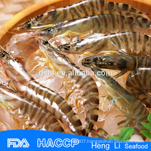 HL002 grade a frozen red shrimp(size 30/50 50/70) on sale