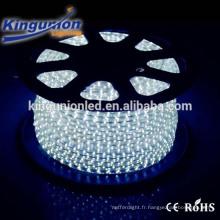 CE Rohs 3000K 4000K bande flexible SMD5050 IP67 imperméable RGB LED Strip pour Décoration