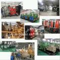 Свалочный газ генератор / газ Когенератора / ТЭЦ газ производя комплект/генератор