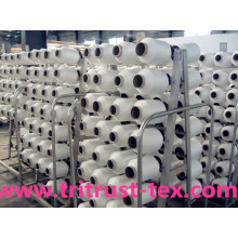 Spun Polyester Sewing Yarn (2/20s)