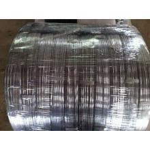 Oval galvanizado do fio 2.2X2.7mm, 2.4X3.0mm para o cerco da exploração agrícola