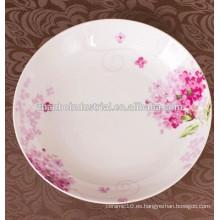 Platos de porcelana de porcelana china de hueso y platos para restaurante y hotel de todo tamaño