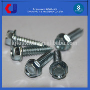 Unique design top quality wholesale tapping screw for plastic