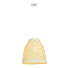 Modern Minimalist Creative Bedroom Dining Room pendant lamp