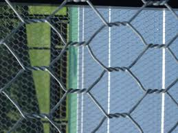 Better Price Hexagonal Rabbit Netting