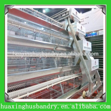 A&H type bird trap cage for chicken for poultry with automatic nipple drinkers