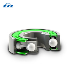 Low Friction Motor Bearings