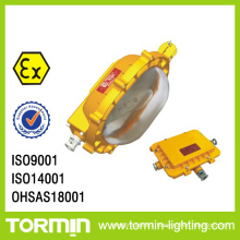 Emergency Explosion Proof Flood Light