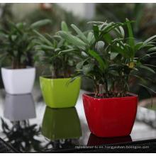 (BC-F1041) Diseño de moda de plástico auto-riego Flower Pot