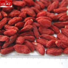 Высокое качество оптовая продажа китайский волк ягоды