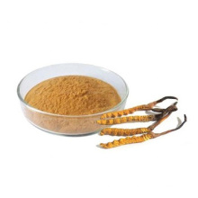 Chinese Supply Pure Natural Best Price Cordyceps Sinensis Extract Powder