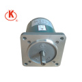 220v 50Hz 55mm 60rpm Low Speed High Torque Magnetic Motor Sale