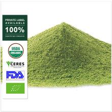 Poudre de matcha de thé vert de gros de marque de distributeur OEM