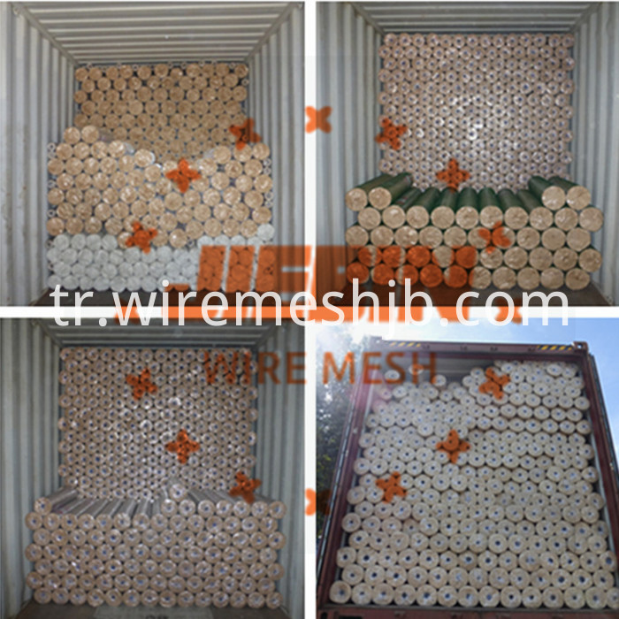 Hot-dip Galvanized Welded Wire Mesh