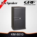 Grf 10 Inch 2 Way Professional Speaker