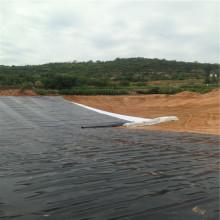 Liners de plástico para lagoas geomembrana hdpe de preço barato