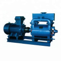 2BE big liquid ring vacuum pump