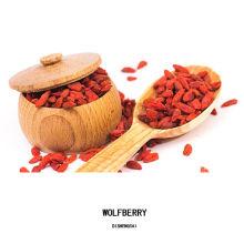 China polvo de wolfberry puro 100% orgánico