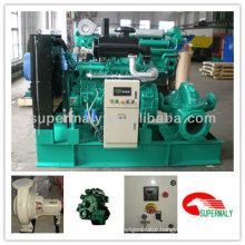 High pressure water pump powered by diesel engine