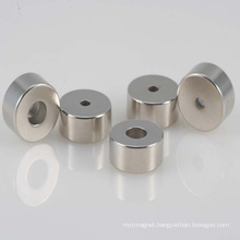 Iregular Permanent Neodymium NdFeB Speaker Magnet with RoHS