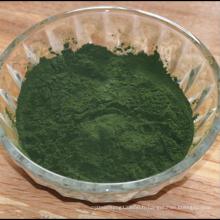 Extrait de plante Sodium Cuivre Chlorophylle Poudre