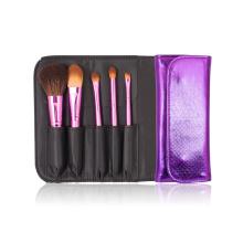 Shiny Color Travel Cosmetic Kit Makeup Brush Set