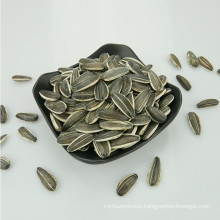 Supply all kinds of hybrid Sunflower seed 5009/3638/3939/1121/363