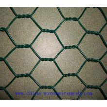 Fabrication professionnelle chinoise pour treillis hexagonal en PVC revêtu