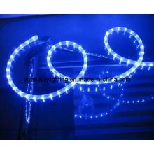 LED Strip Light 4 Wires LED Rope Light (Flat Shape)